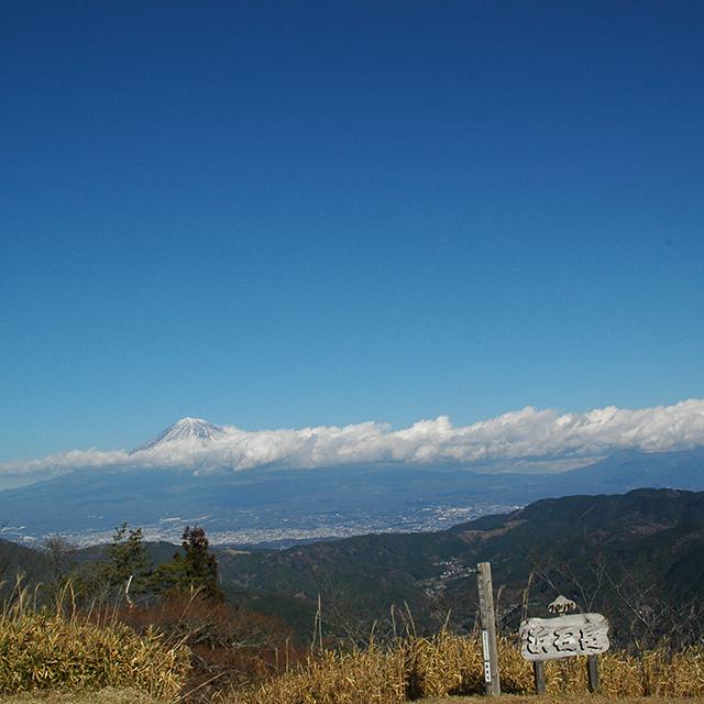 見えましたよきれいな富士山が