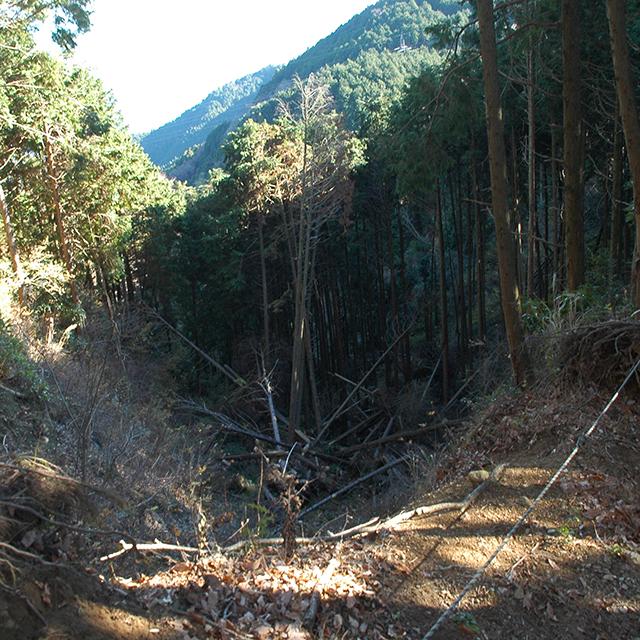 道が陥落している浜石岳