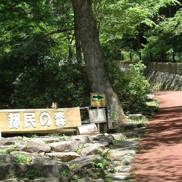 都民の森入り口