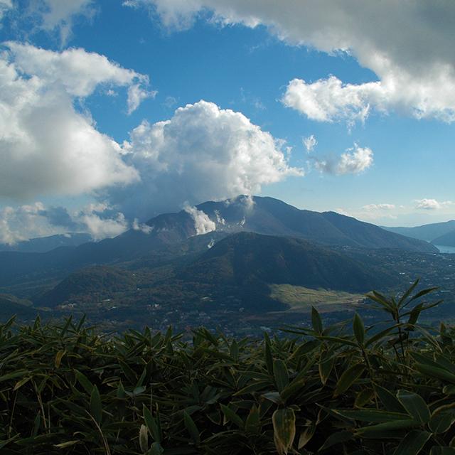 山頂から仙石原