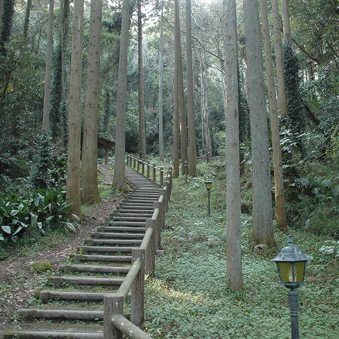 伏姫籠穴への道