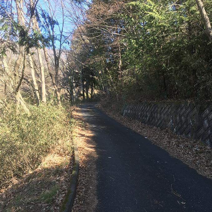 扇山への道
